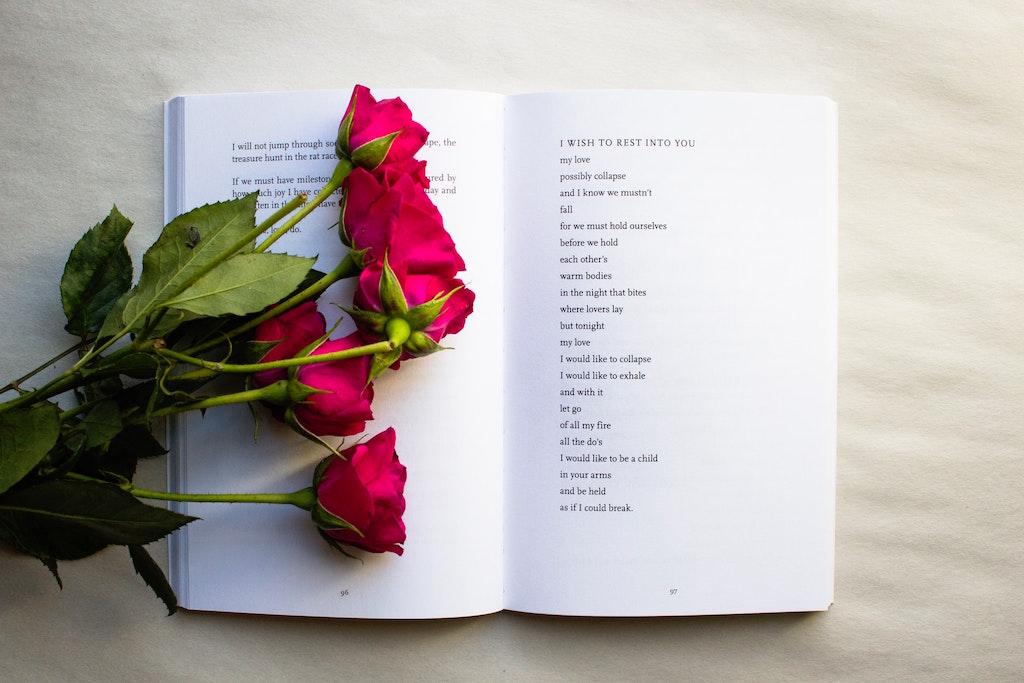 haiku poem, haiku poems, poems - haiku, poem haiku, examples of a haiku, haiku examples, a haiku example, examples for haiku, haiku example, example of a haiku, examples haikus, what is a haiku, #haiku #haikupoem