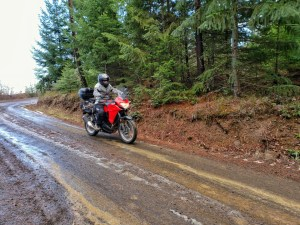 PointsUnknown - Kawasaki Versys-X 300 - Off Road