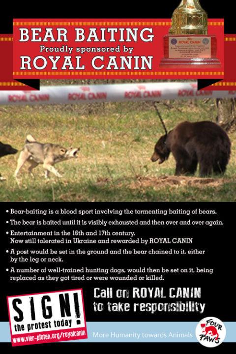 4PF_Royal_Canin_7-13_eng_RZ
