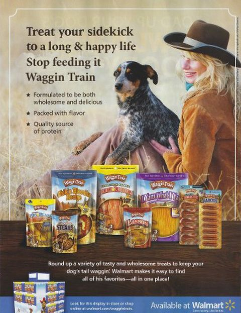 Waggin Train Nestle Purina Jerky Treats for Dogs Made in China