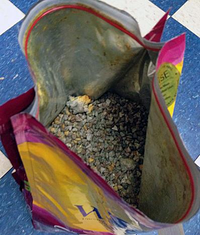 WellPet Wellness mold aflatoxin dry food recall moisture dog small