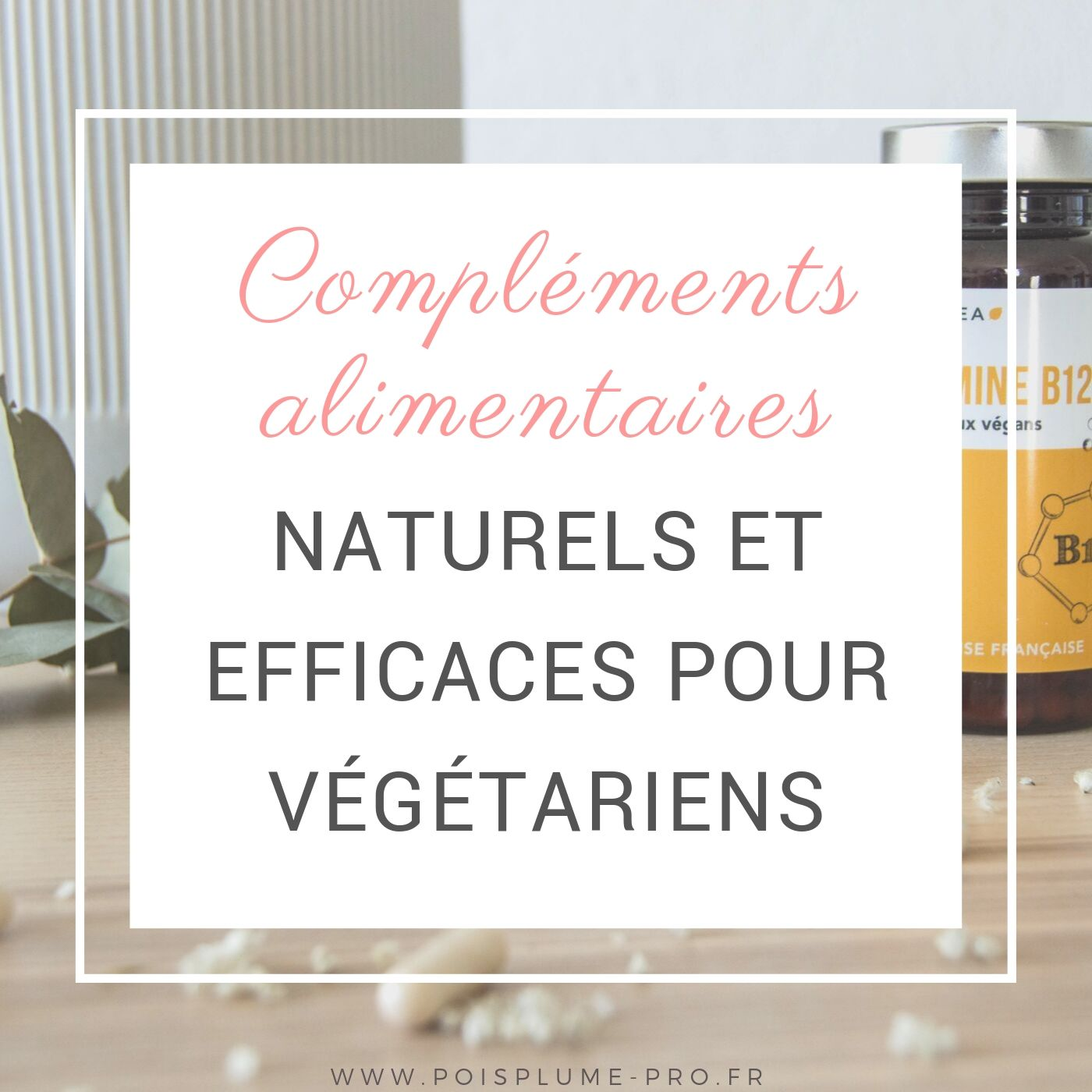 compléments alimentaires naturels et efficaces pour végétariens (2)