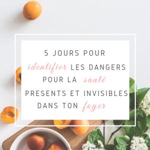 dangers_sante_formation_gratuite_maison_zero_dechet