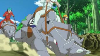 XY 07 course de rhinocornes