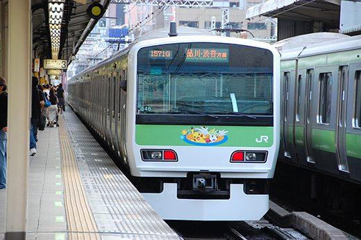 Questo è un treno della metropolitana di Tokyo raffigurante Pikachu e Shaymin.