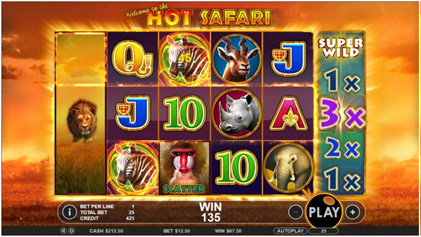 Hot Safari Game Features