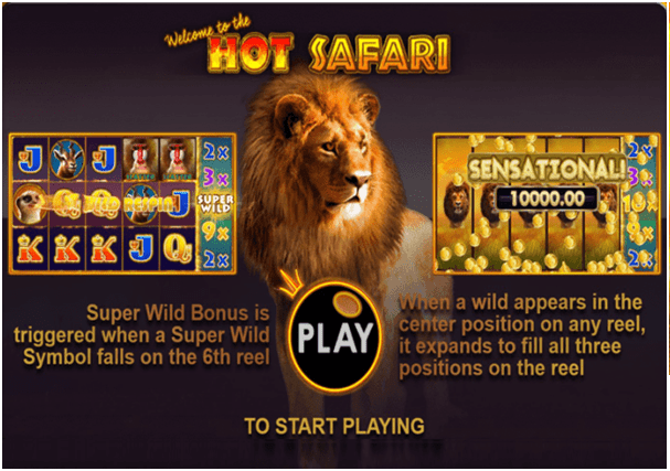 Hot Safari Game Play