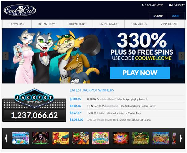 Cool Cat Casino Bonuses to grab with iPad