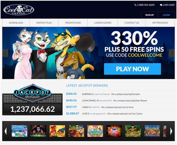 Cool Cat Casino Bonuses to grab with iPad