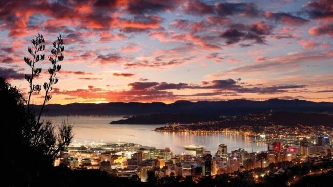Auckland to Wellington 8 days