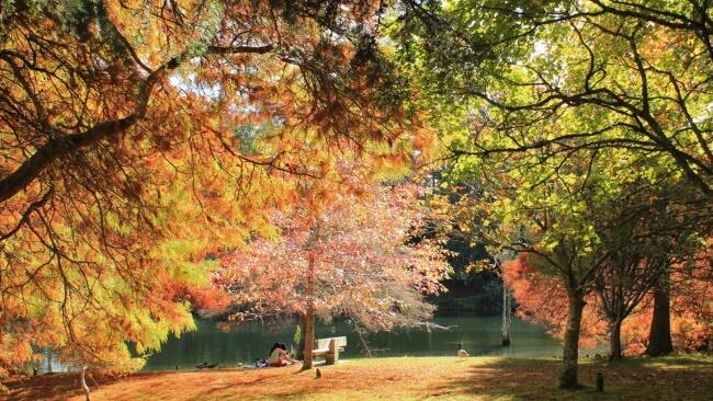 Autumn (Mar, Apr, May)