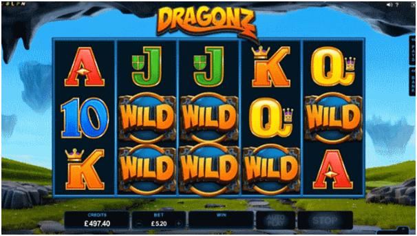 Wild in Dragonz