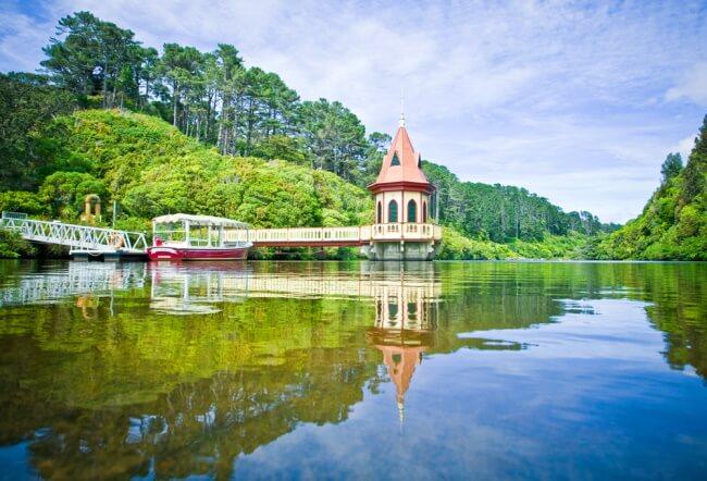 Explore Zealandia Eco-sanctuary