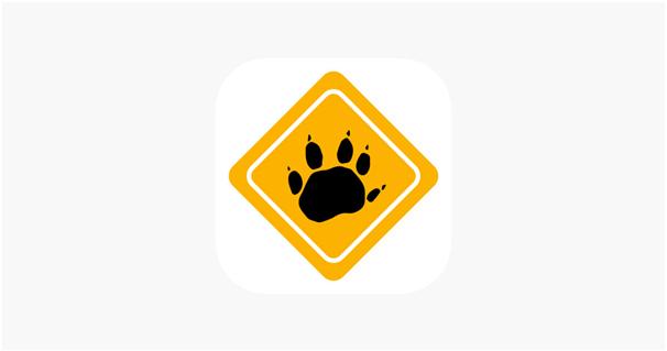 Roadkill Tas App