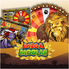 What are the best online casinos to play Mega Moolah in New Zealand
