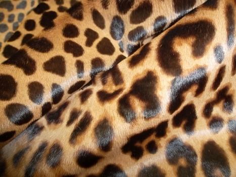 Купить кожаные женские дубленки по лучшим ценам | Фото ...