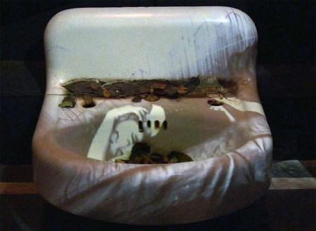 Maya Deren's Sink, Barbara Hammer