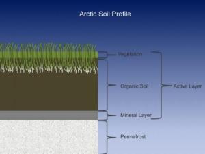 3 July 2016 Soil Samples | PolarTREC