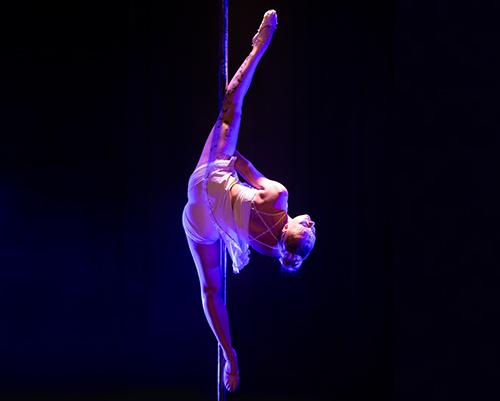 cours-inter-pole-dance2