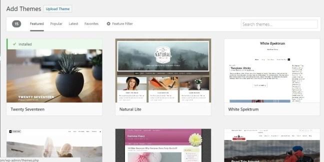 Start a fitness blog: WordPress install theme