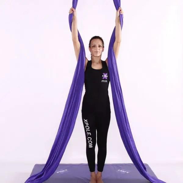 aerial silks x pole
