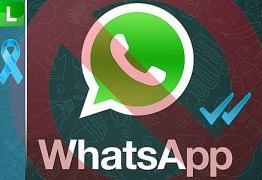 WhatsApp começa a liberar recurso de chamadas de voz, diz site