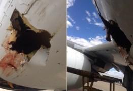 Um pássaro bateu de frente com um avião e deixou um rombo na aeronave