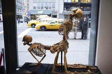 museudosexo05 630x418 - VÍDEO - Conheça o Museu do sexo em Nova Iorque, que tem até pula-pula com peitos gigantes