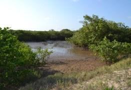 Cagepa garante que água do Rio Gramame se encontra nos padrões para uso
