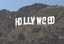 Letreiro de Hollywood é alvo de vandalismo e vira 'Hollyweed'