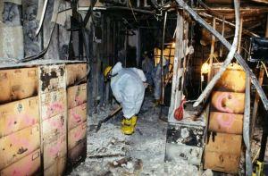0006 300x197 - FBI revela novas fotografias do 11 de Setembro
