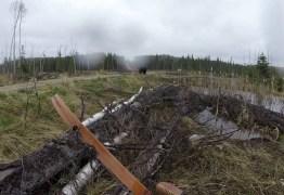 VEJA VÍDEO: caçador filma ataque de urso no Canadá