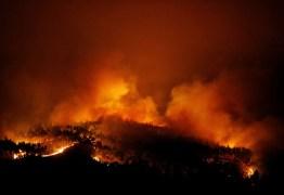 Quase 2 mil bombeiros combatem incêndio no centro de Portugal