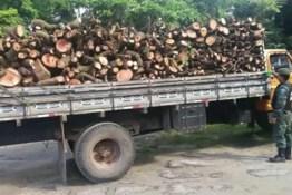 Três pessoas são presas em caminhão carregado de madeira ilegal em João Pessoa