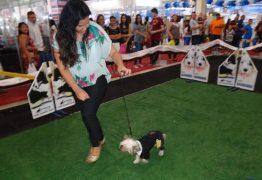 Brasil Mostra Brasil impulsiona mercado de pets em João Pessoa