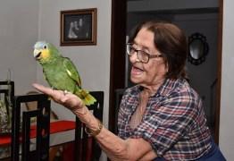 FOLHA DE S. PAULO: Ibama recorre mais uma vez à Justiça para apreender o papagaio Leozinho