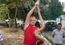 Jiboia de três metros é capturada em rua em João Pessoa