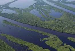 Aeronave do Greenpeace cai no Amazonas, diz FAB