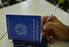 Paraíba está entre os estados do Nordeste que mais geraram empregos