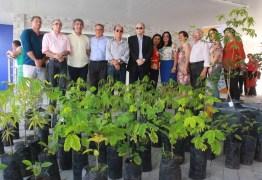 Patos recebe do Sesc/Senac 200 mudas de árvores nativas para arborização na cidade