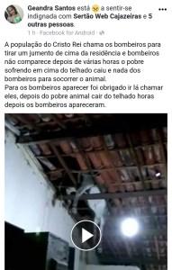 3d6966af d104 4387 a1e1 30917b19dcd6 191x300 - BURRO VOADOR ?: População de Cajazeiras se reúne para tirar jumento de um telhado - VEJA VÍDEO