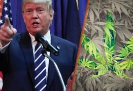Governo Trump abre 'guerra' contra legalização da maconha