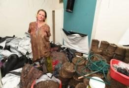 Mulher retorna de viagem e encontra casa cheia de maconha