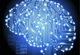 Bilionário paga para ter cérebro digitalizado após a morte