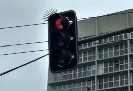 Instalação de cílios em semáforos de Curitiba é criticada na web