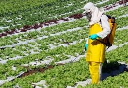 Comissão da Câmara aprova projeto que flexibililza uso de agrotóxico