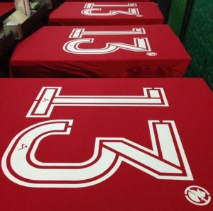 camisa alex 300x298 - Irreverência na Copa: camisas diferenciadas fazem sucesso na hora de torcer