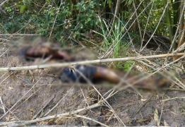 URGENTE -Corpo do universitário filho do radialista Clodoaldo acaba de ser encontrado na zona rural de Pedras de fogo -VEJA VÍDEO