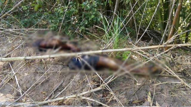 1531930266009148faf2f51965ee5270ef8b37838e - URGENTE -Corpo do filho do radialista Clodoaldo acaba de ser encontrado na zona rural de Pedras de fogo