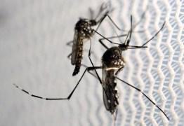 Secretaria de Saúde registra 18 mortes por Chikungunya, dengue e Zica na Paraíba